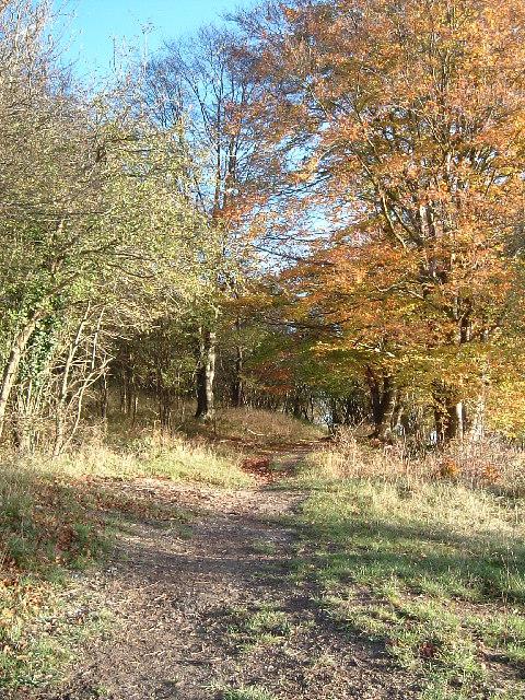 Footpath to Aldbury Nowers off Northfield Road, Tring
