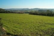 Farmland at Bramble Hill, Walton
