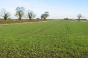 Farmland at TA020541