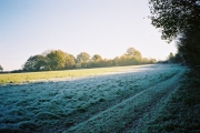 Frosty field edge, Remenham