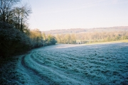 Frosty hillside, Remenham