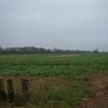 Little Baldon Farm