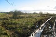 Muddy field, Woodend.