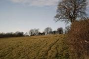 Farmland near Rows Farm