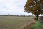 Nomansland: Stubble field