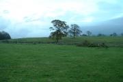 Farmland at Forton