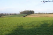 Jubilee Wood and farmland, west of Upton, Peterborough