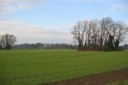 Farmland - Willerby Low Road