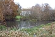Layter's Green Pond
