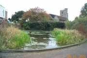 Bushey: The Church of St James, and the Pond