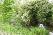 River Hiz, Ickleford
