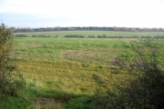 Callow Brook valley, Dry Drayton, Cambs