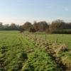 Radlett: Little Kendals Wood