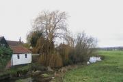 River Roding at Abridge