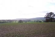Fields of Five Elms Farm