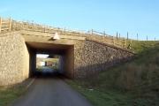 A pair of motorway bridges