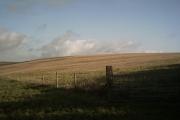 Farmland on Halsinger Down