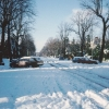 Winter Snow 1990