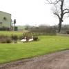 Cropston House Farm