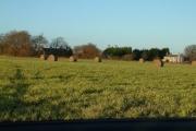 Broard Farm
