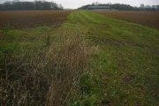 Farm track to Rydals Wood