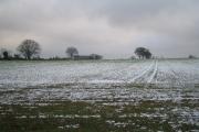 Farmland near Allesley Green
