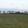 Farmland at Sheepridge