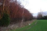 New Park Wood, Atherton