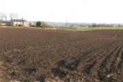 Cameron Farm by Buckhaven