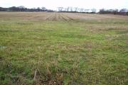 North Glastullich Farmland