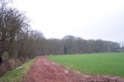 Highlea Wood