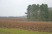 Farmland near Stoughton, Leicester