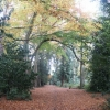 Pine Woods Woodhall Spa