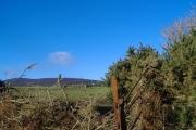 Farmland near Ballamodha
