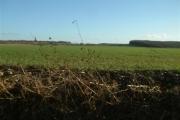 Looking South East towards Manton Copse