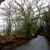 Hemp Lane, near Wigginton, looking East