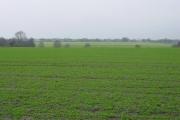 Farmland near Illidge Green