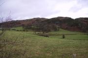 Farmland Low Newton