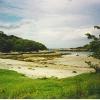 Samalalaman, west of Glenuig, at low tide