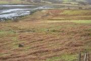 Head of Loch Portree