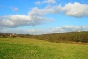 Hoads Hill Wood