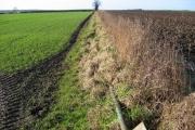 Kirkburn Farmland