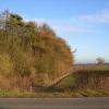 Low Wood - East