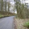 Laund Wood