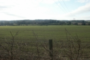 Fields, Swardeston