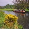 Narrowboat on the River Wey at Farncombe.
