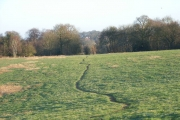 Farmland near Bracknell