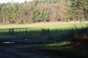 Farmland east of Rapley Lake