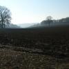 Arable farmland at Hollandridge Farm