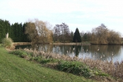 Lake by Lower Chilworth Farm